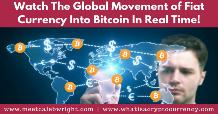 Watch The Global Movement Of Fiat Currency Into Bitcoin [In Real Time!]