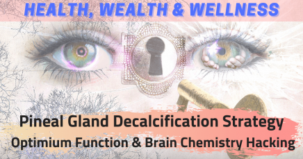 Pineal Gland Function & Decalcification / Detoxification Strategy + Brain Chemistry Hacking